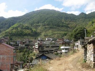 中国柏崖村
