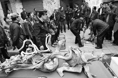 郑州市古玩场的崖柏竟然大多是冒充的