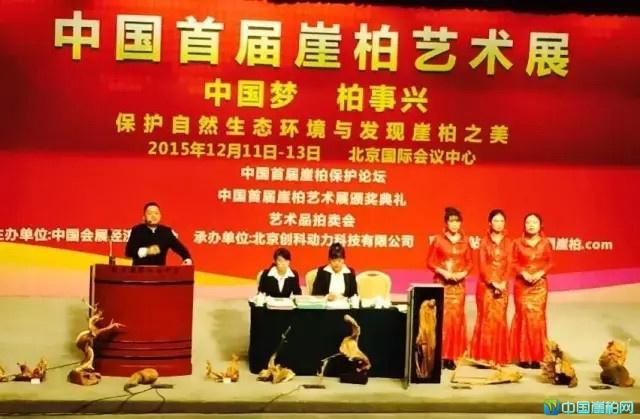 中国首届崖柏艺术展