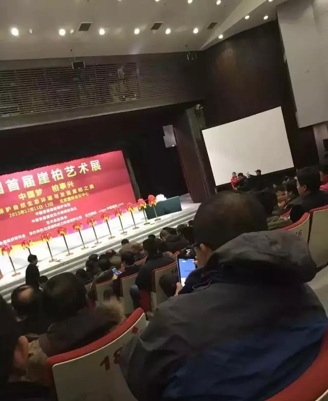 """12月11日""""首届崖柏艺术展""""开幕第一天"""