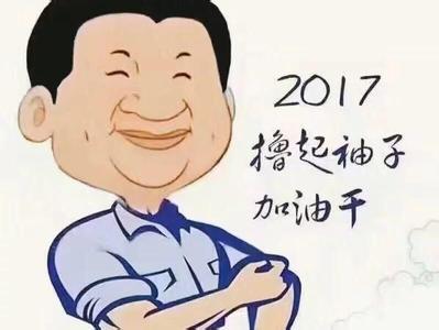 """2017,我们一起,""""撸起袖子""""加油干!"""