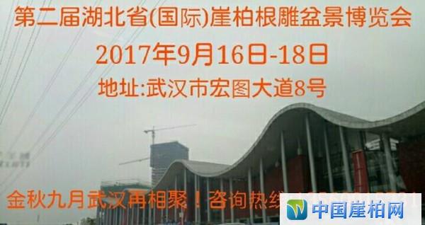 第二届湖北省(国际)崖柏根雕盆景博览会