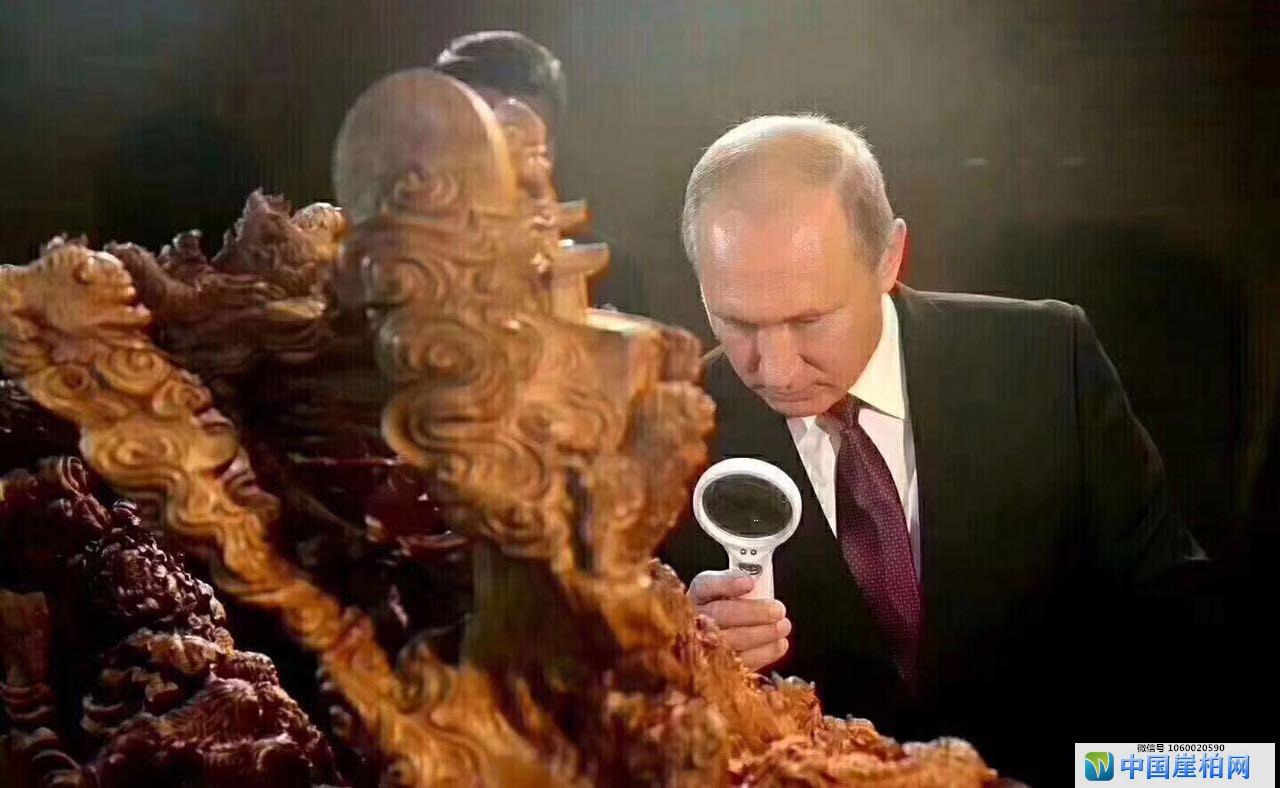 """普京总统参观的并非""""崖柏"""",而是檀香《事事如意》"""