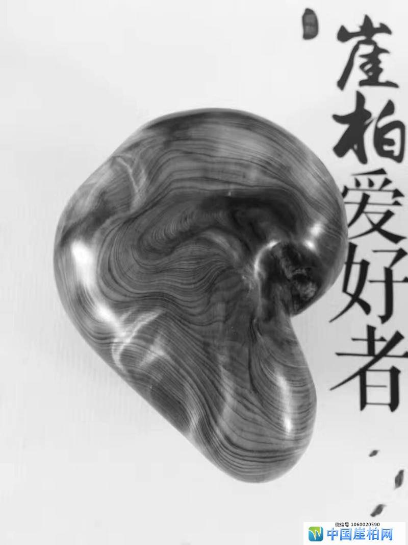 """淡定:崖柏打磨大师""""辛广辉"""""""