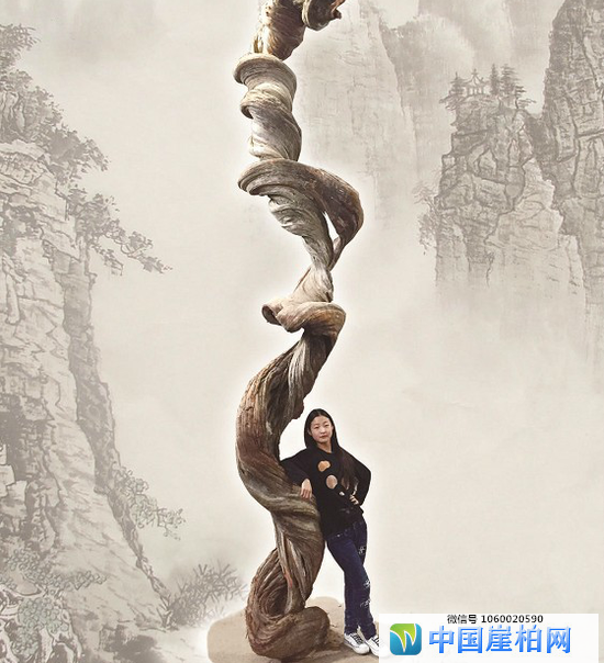 """企业家""""逸龙,龙宇成""""将在湖北打造中国崖柏之都"""
