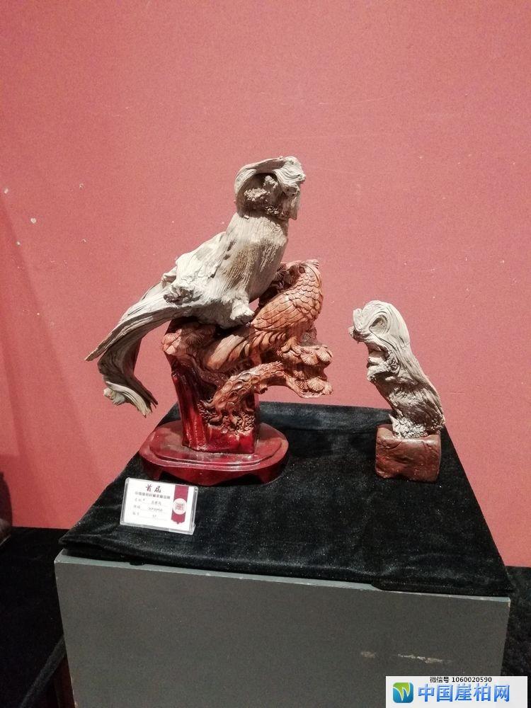 中国崖柏收藏家藏品展在石家庄顺利开幕