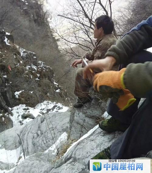 万里冰封,冬季采挖崖柏难度再升级