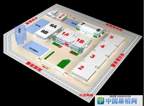 2019中国崖柏艺术品博览会(北京文博会)