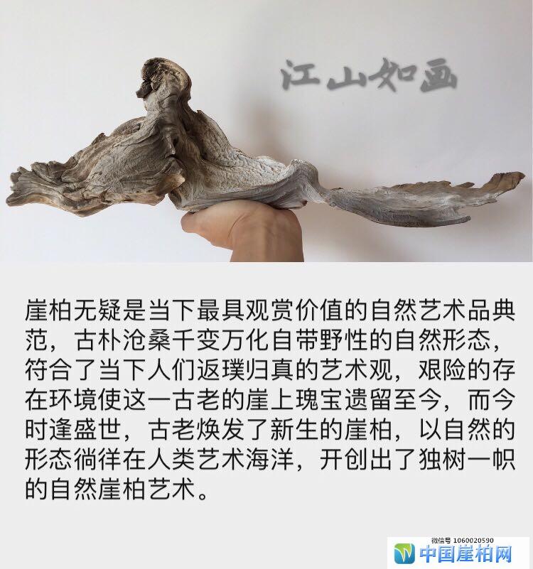 """太行崖柏完整白骨意境摆件""""江山如画"""""""