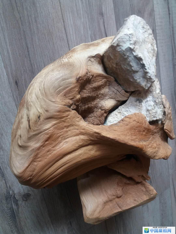 崖物作品《温暖的怀抱》