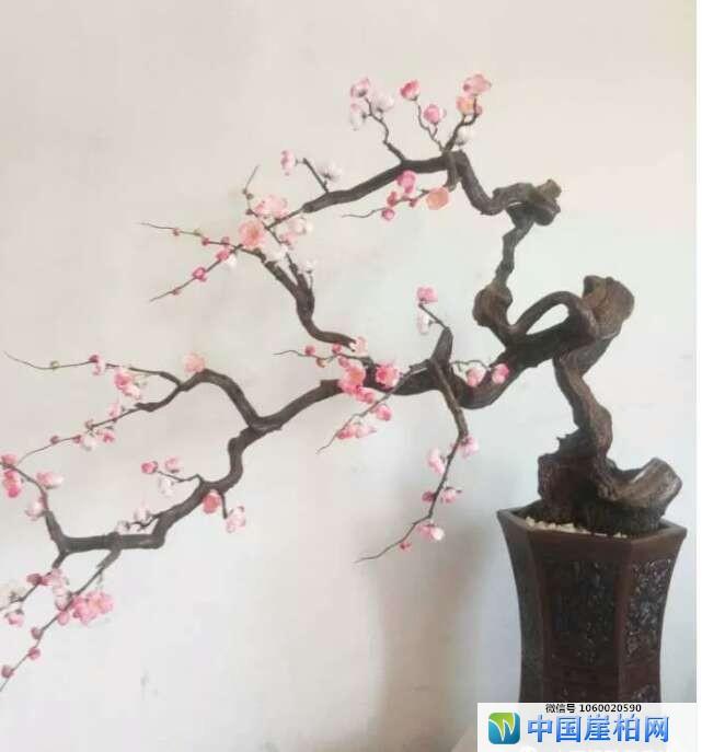 山西根雕工艺美术师:张永红作品欣赏