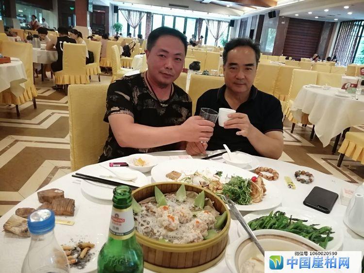 """拜访广东崖柏收藏家""""李雹""""记"""