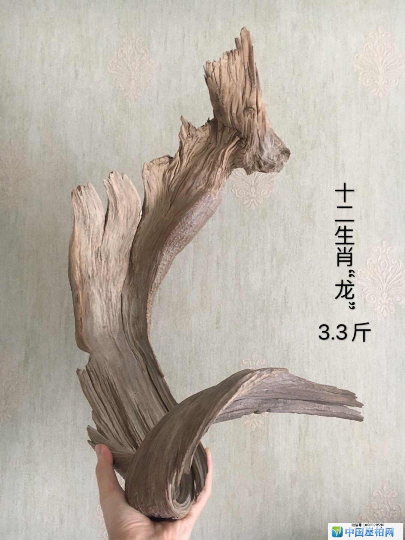 """太行崖柏红骨象形料十二生肖""""龙"""""""