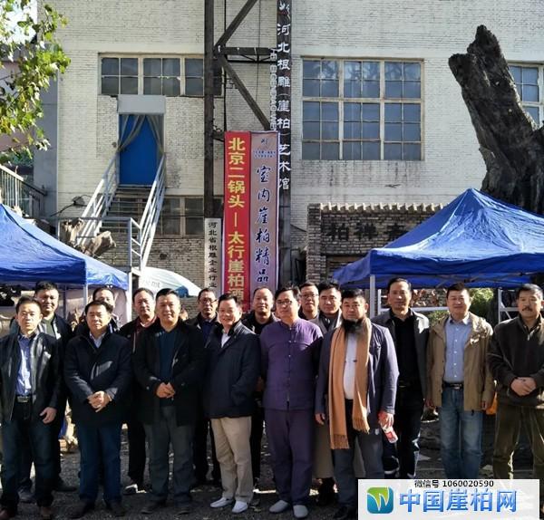河北省第八届崖柏艺术品淘宝会