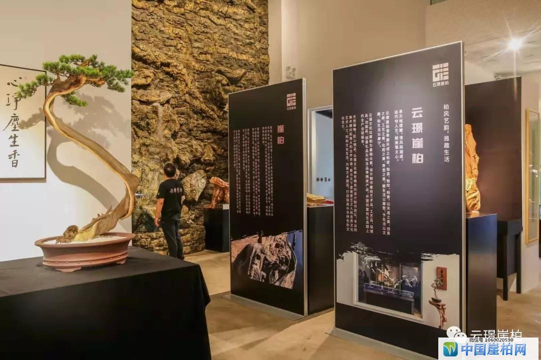 郑松强【北京798】崖柏雕刻艺术作品展