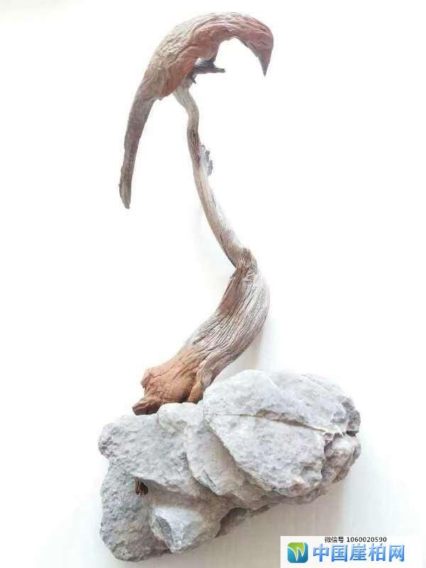 《高处不胜寒》   崖柏作品 高32厘米、重0.2斤