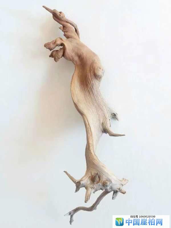 《诗圣》     崖柏作品 高51厘米、重1.1斤
