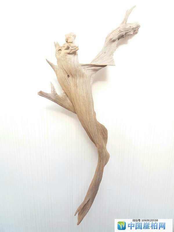 《蝙蝠与人类共舞》崖柏作品、高43厘米、重o,6斤.