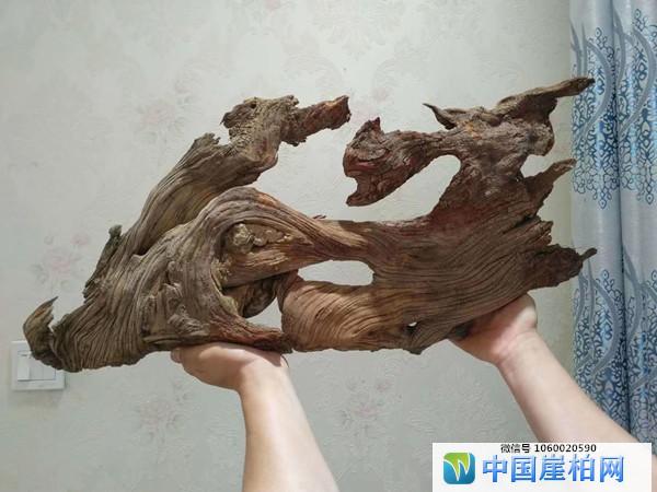 """太行崖柏完整意境料""""百鸟朝凤"""""""
