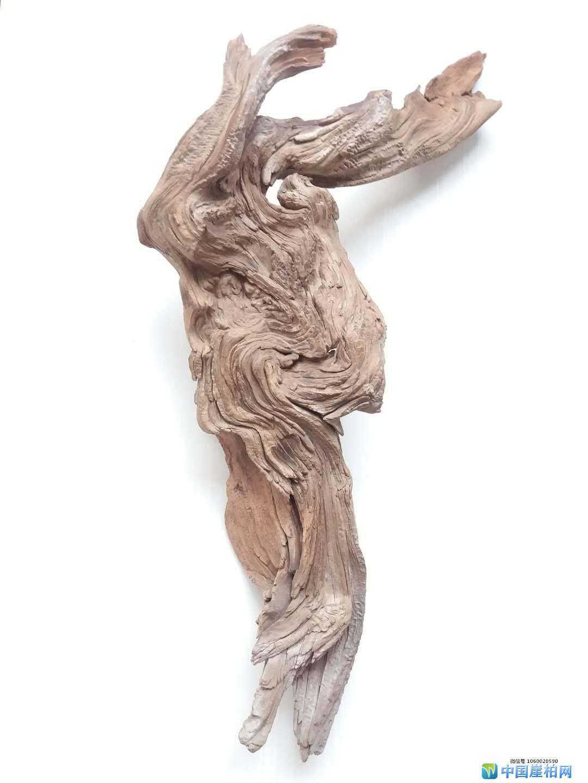 《其乐融融》    崖柏作品 高56厘米、重1.5斤