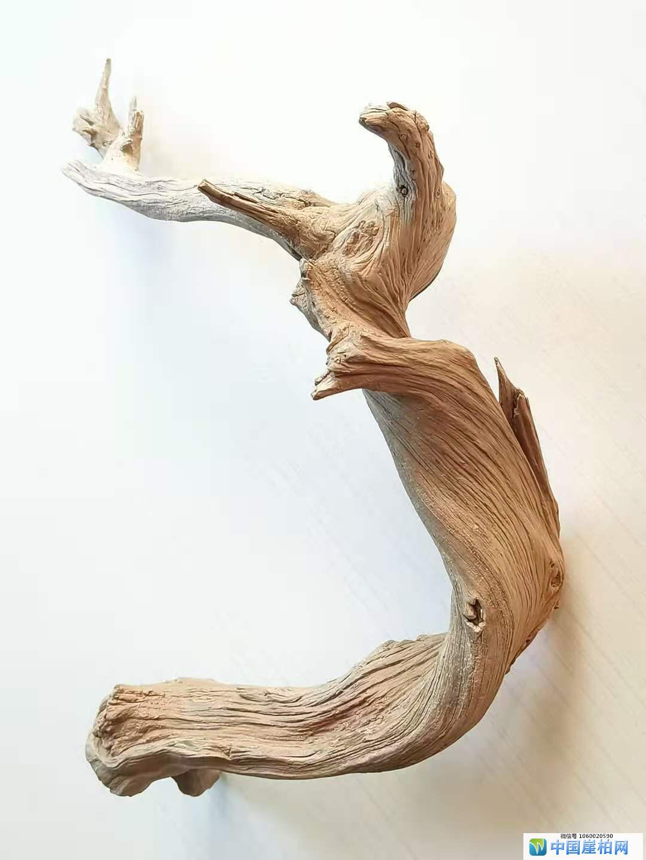 《喜鹊登枝》崖柏作品  高23厘米   重450克