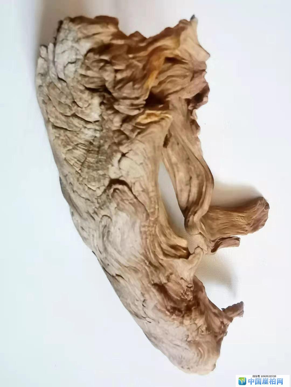 《风神》 崖柏作品 高 22厘米  重150克
