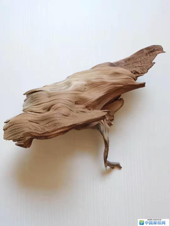 《和平使者》 崖柏作品  高23厘米  重1250克