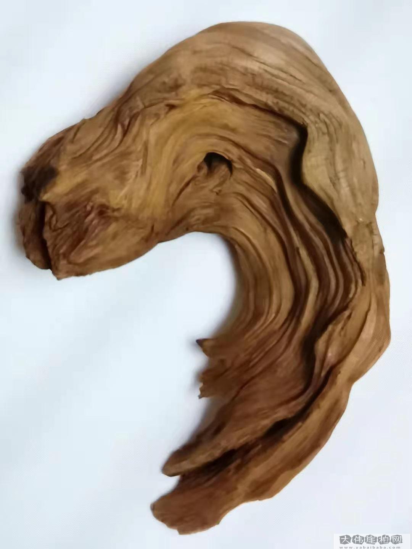 《金毛犬》崖柏作品 高26厘米 重I600克