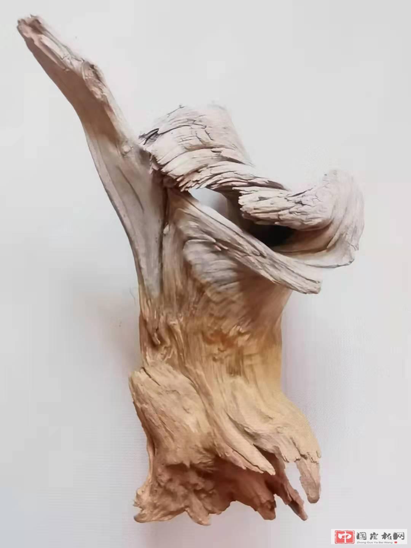 《捶胸顿足》崖柏作品  高26厘米  重500克