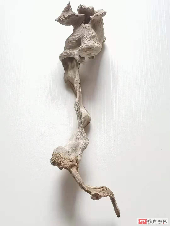 《蛰伏》 崖柏作品 高37厘米  重200克