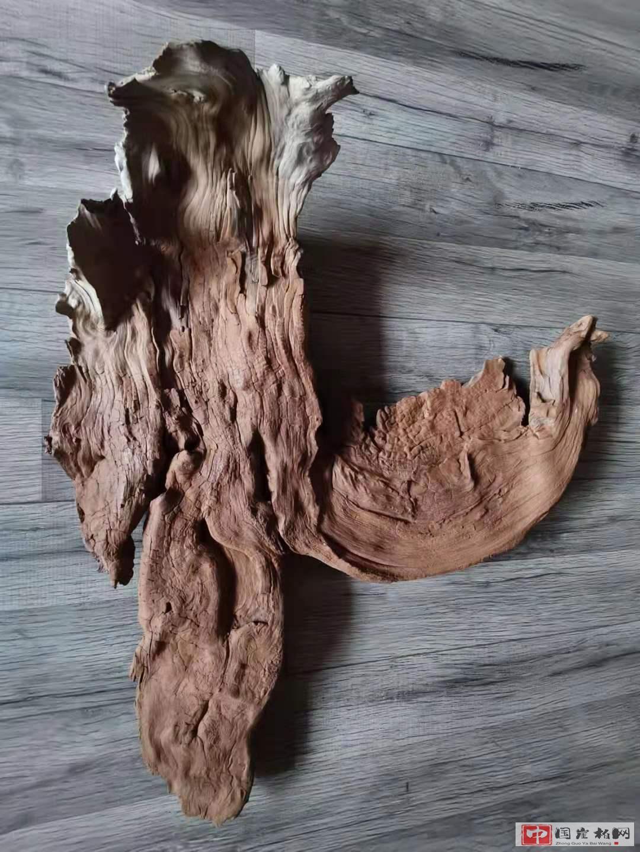 巜金鸡》   崖柏作品 高59厘米   重3200克