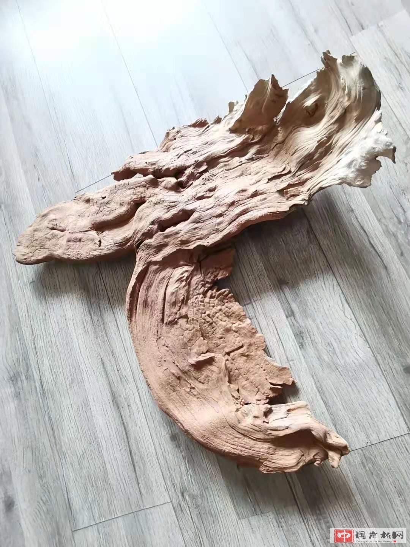《老吾老…》崖柏作品   高59厘米  重3200克